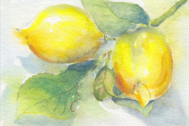 Watercolour of two lemons